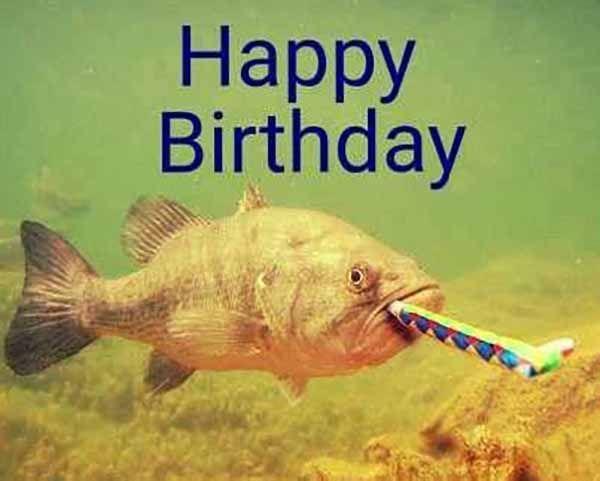 15 Funniest Happy Birthday Fishing Meme Images Happy Birthday Fishing Happy Birthday Nephew Happy Birthday Man