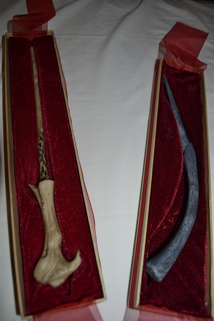 Voldemort and Bellatrix's wands by g.SPocky, via Flickr