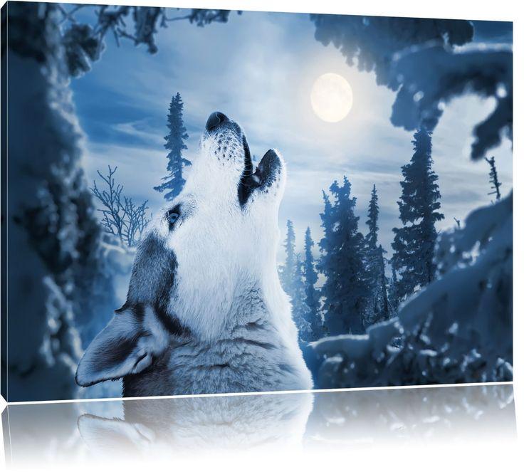 Heulender Wolf vor Mondlicht, Bild auf Leinwand, XXL riesige Bilder fertig gerahmt mit Keilrahmen, Kunstdruck auf Wandbild mit Rahmen, günstiger als Gemälde oder Ölbild, kein Poster oder Plakat, Format:100x70 cm: Amazon.de: Küche & Haushalt