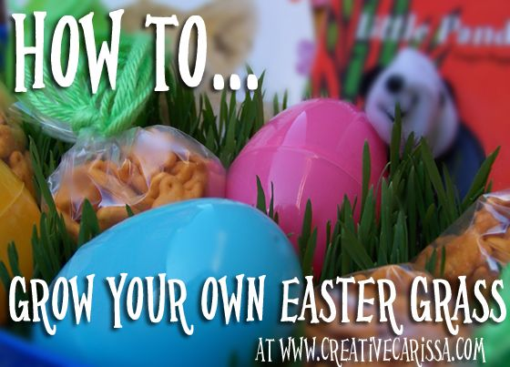 Grow your own Easter grass. Takes about 7 days and only 15 cents in supplies per basket!