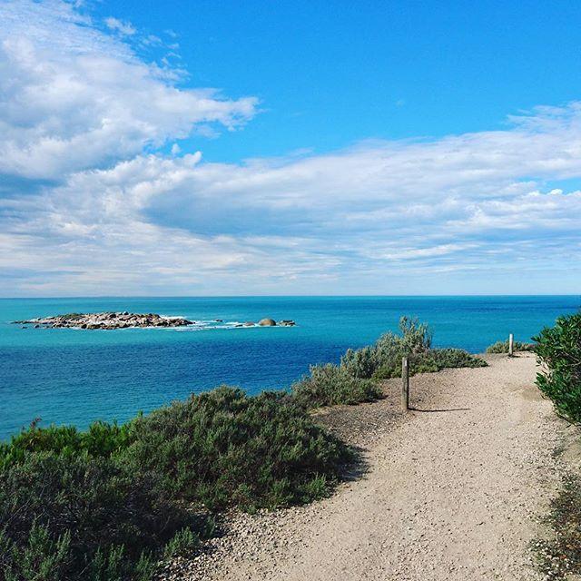 【masanari3】さんのInstagramをピンしています。 《・ To the Atlantic ocean..., 2015 ・ #Atlantic #ocean #blue #sky #road #Australia #sa #海 #空 #青 #道 #南極海 #オーストラリア #南オーストラリア州》
