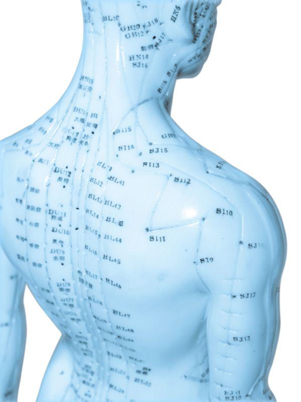 От инсульта не застрахован ни один человек, причины инсульта различные: болезнь крови, атеросклероз. Мозговое нарушение работы мозга и сосудов ведут к параличу и афазии (потери речи). В одних случ…