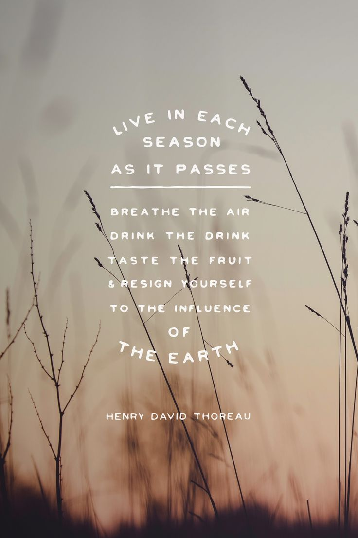 """""""Live in each season as it passes; breathe the air, drink the drink, taste the fruit, and resign yourself to the influence of the earth."""" - Henry David Thoreau  #madewithover"""