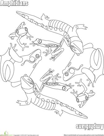 amphibian coloring pages | 440 best images about Montessori on Pinterest