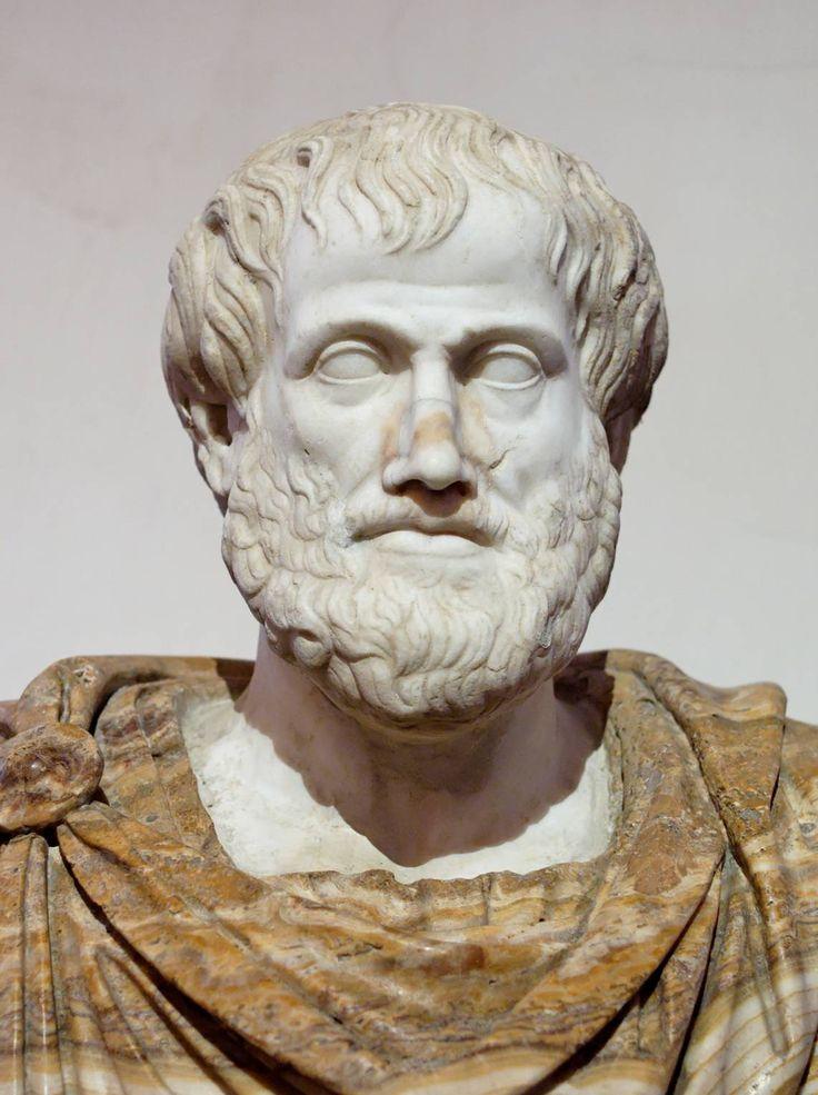 Aristote était un philosophe grec ancien et un scientifique né dans la ville de Stagira, Chalkidice, à la périphérie nord de la Grèce classique. Son père, Nicomachus, est mort quand Aristote était un enfant, après quoi Proxenus d'Atarneus est devenu son gardien.