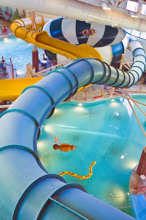 30 best Grapevine, TX | Great Wolf Lodge images on Pinterest | Great wolf lodge, Water parks and ...