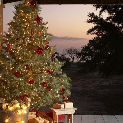 85 Best Cool Christmas Trees Images On Pinterest Holiday Ideas  - Decorate Christmas Tree Without Ornaments