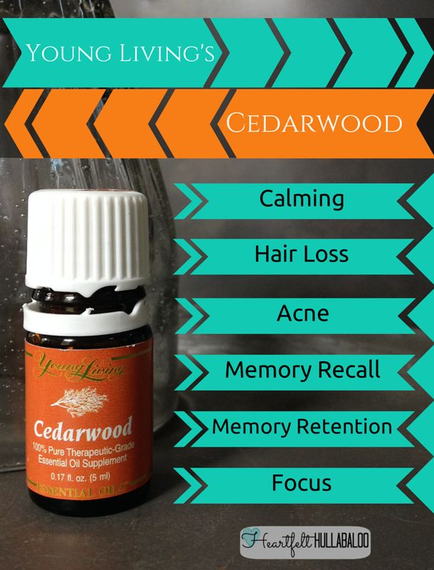 Young Living's Cedarwood. Calming, age related hair loss, acne, memory recall, memory retention, focus. #essentialoils #undertwentydollars #heartfelthullabaloo