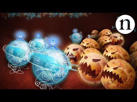 Immunology wars: Monoclonal antibodies - YouTube