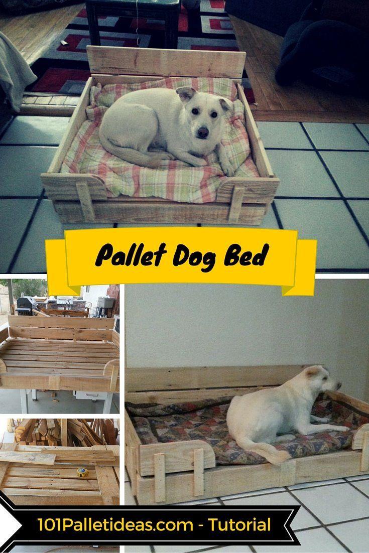 183 Best Images About Dog Beds On Pinterest Pallet Dog