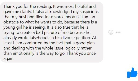 Thank you for the reading. It was most helpful and gave me clarity. It also acknowledged my suspicions that my husband filed for divorce because i am an obstacle to what he wants to do, because there is a young girl he is seeing. It is also true that he is trying to create a bad picture of me because he already wrote falsehoods in his divorce petition. At least I  am comforted by the fact that a good plan and