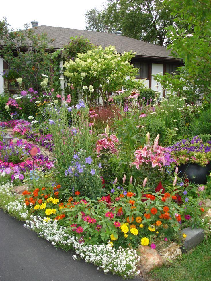 Algunas De Las Flores En El Patio Delantero Al Lado Del Camino De Entrada En La Calle Algunas Call Cottage Garden Front Yard Garden English Cottage Garden