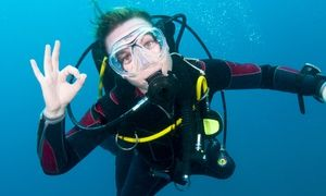 Groupon - Introductory Scuba-Diving Session or Basic Open Water Certification Class at Cincinnati Scuba & Aquatics (Half Off)  in Forest Park. Groupon deal price: $15