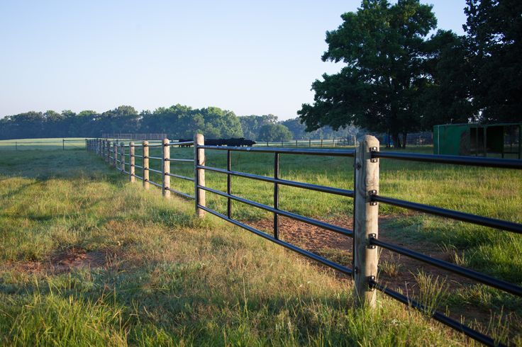 Ponderosa fence is safe for livestock confinement, without sharp edges or barbs