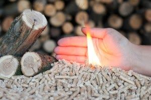 192 Best Pellet Stoves Images On Pinterest Wood Burning