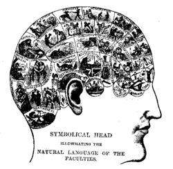 La Fisiognomía, así como, la Frenología, la Personología, la Morfopsicología han sido consideradas psudociencias durante el siglo XIX. ¿Podríamos decir que un código único capaz de explicar la relación mente cuerpo es inevitablemente totalitario?