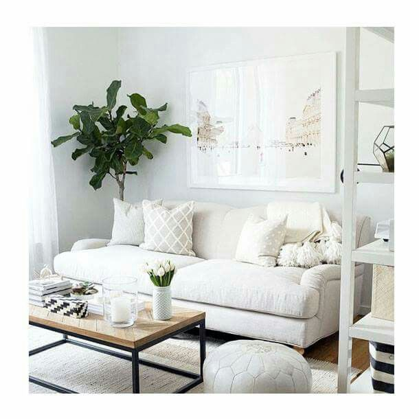 Great plant, poof and white vase.