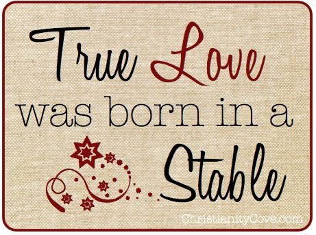 ❝True love was born in a stable❞ ツ#perspective  #Bam #Christmas #xmas #truth #love #Jesus #BeBlessed #JesusIsTheReasonForTheSeason