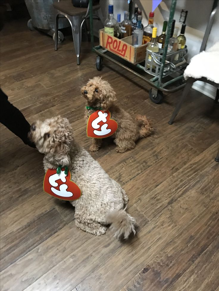 90s party beanie baby dog costume
