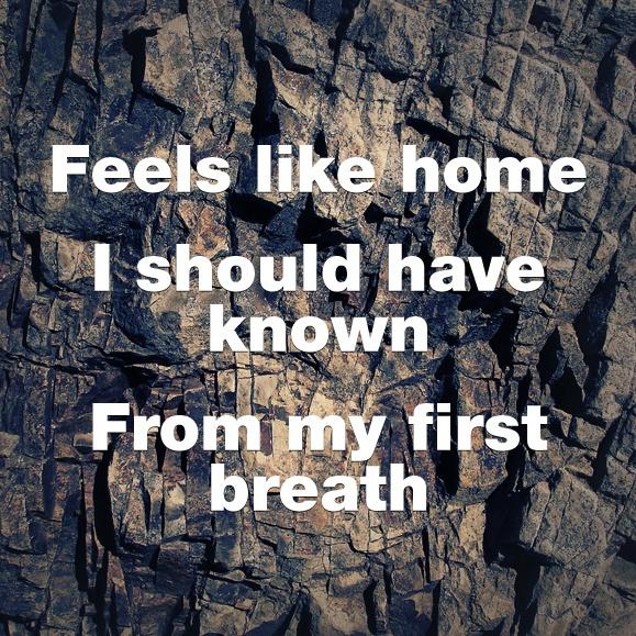 depeche mode home lyrics