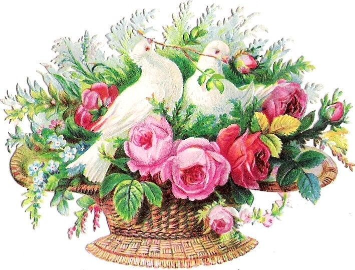 Oblaten Glanzbild scrap die cut chromo Taube dove pigeon Korb basket rose