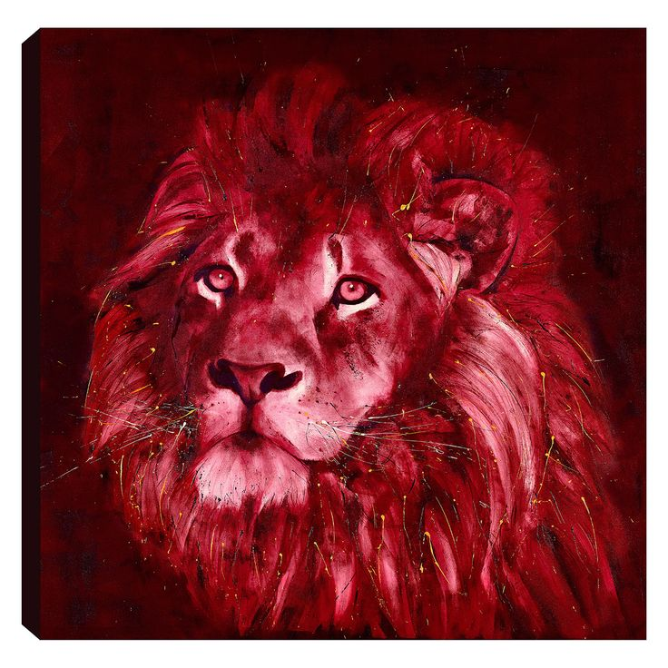 An energetic boxed canvas by contemporary wildlife artist David Rees. An energetic boxed canvas by contemporary wildlife artist David Rees.This piece was painted during the summer of 2017 and was inspired by the British and Irish Lions rugby tour in New Zealand.