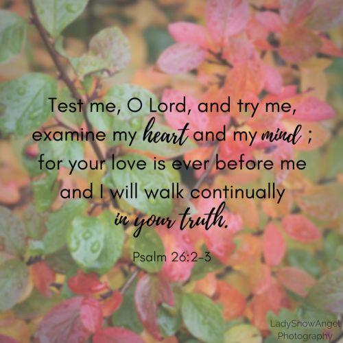 Psalm 26:2-3 - #typography by @ladysnowangel