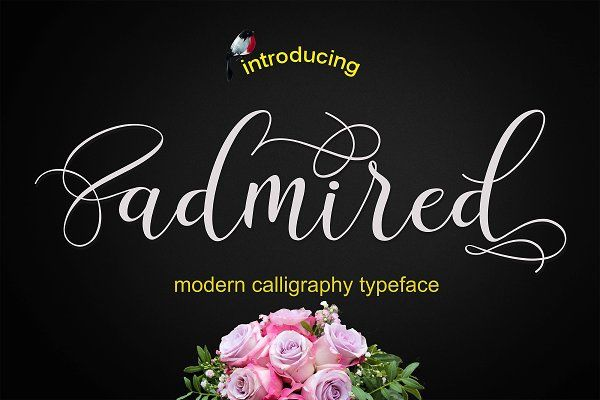 Admired Script - 30% off by MrLetters on @creativemarket