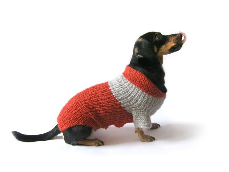 Dog clothing, Dachshund sweater, handmade pets clothing, Small Dog Clothing Sweater, pet fashion, teckel clothing.