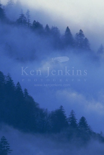 Ken Jenkins Photographer