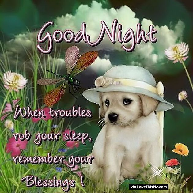 Nice Good Night Quotes With Images: Goodnight Remember Your Blessings