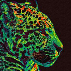 The Jaguar Copyright © 2015 Stacey Chiew. All rights reserved.