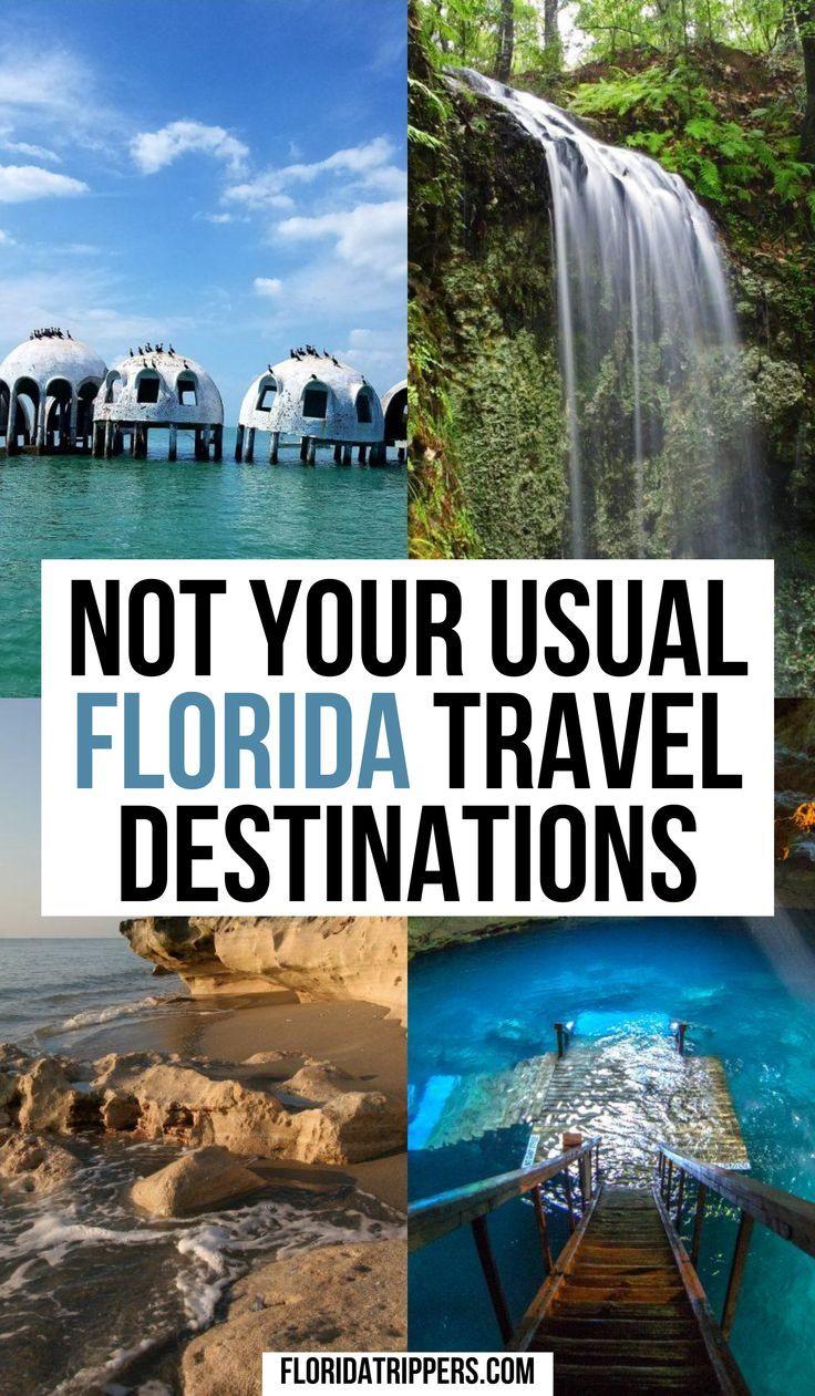 16 Magical Secret Spots And Hidden Gems In Florida Florida Trippers Florida Travel Destinations Florida Travel Florida Adventures