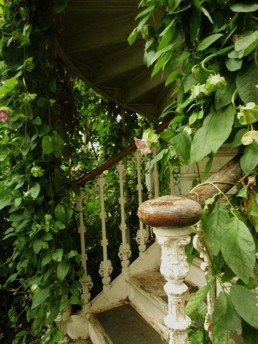 escalier de la serre tempérée des Kew Gardens à Londres, via le divan fumoir bohémien