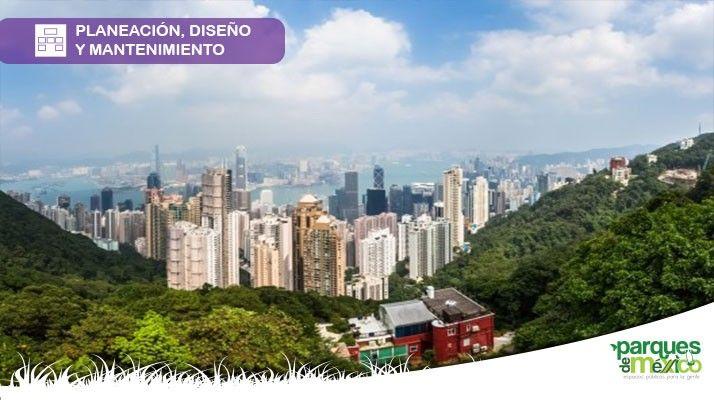 Planificación urbana para tener ciudades sustentables