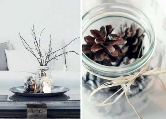 Glas mit Kiefernzapfen Pflanzenstängel Blumenvase