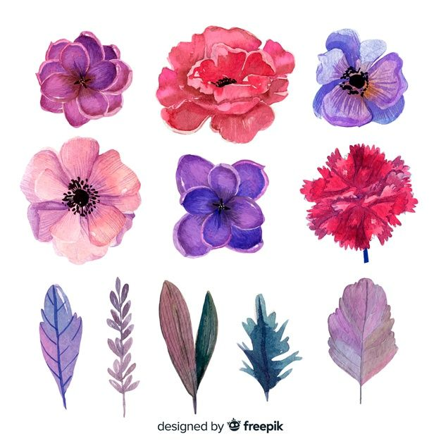 Pin By Mysz Mysza On Fr Floral Watercolor Flowers Floral Artwork Watercolor