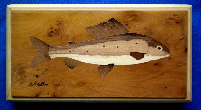 grayling inlaid with burr yew, box stremmer