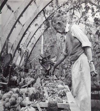 1966.Virginia Woolf's Husband, Leonard in the greenhouse. Frederic Spotts Collection, Mortimer Rare Book Room, Smith College.