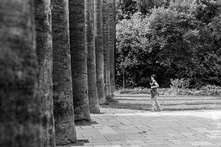 Running towards the Trees