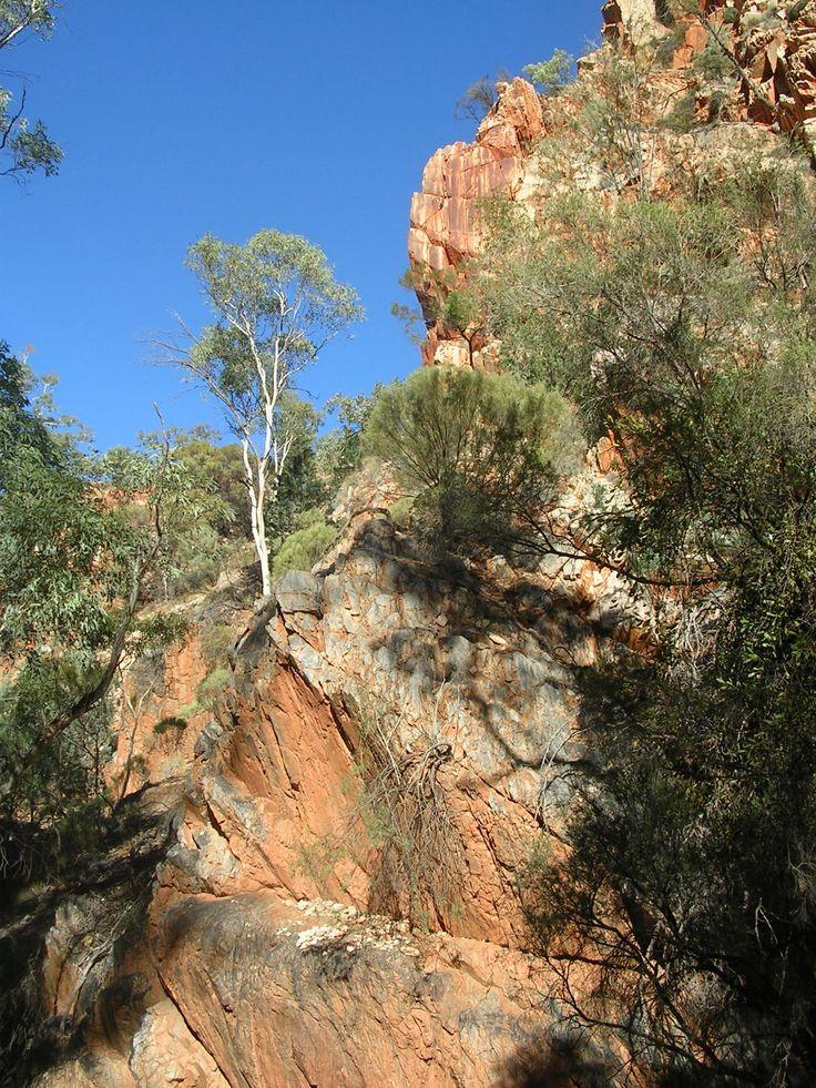 alice springs australia/ the outback