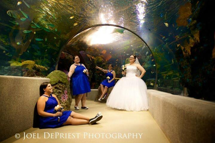 Virginia Aquarium Wedding Wedding Ideas Pinterest