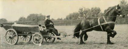 Fries paard voor hooiwagen bij J. J. de Vries te Ypescolga, foto circa 1915.  Tags: Fries paard, Frysk hynder, Friesian horse