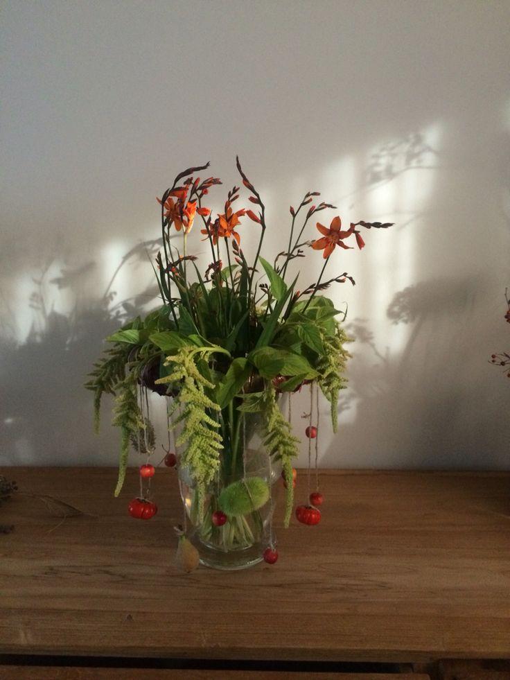 Creatief amaranthus