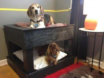 Etagenbetten für Hunde mit Paletten! 4