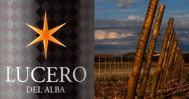 Un buen ribera por debajo de ocho euros | Lucero del Alba http://vinos.elconfidencial.com/lucero-del-alba-2011/