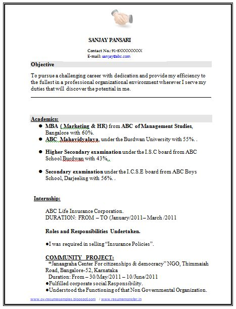 sample template of excellent fresher or experience resume