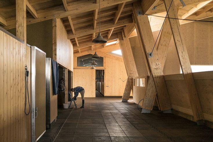 Gallery - Equestrian Centre / Carlos Castanheira & Clara Bastai - 12
