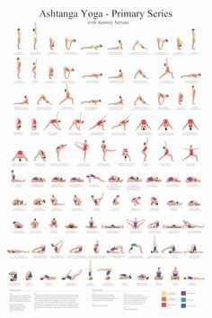 24 « x 36 » Ashtanga Yoga primovaccination avec Sammy Seriani. Cette affiche illustre les postures de la série primaire Pleine couleur affiche montre