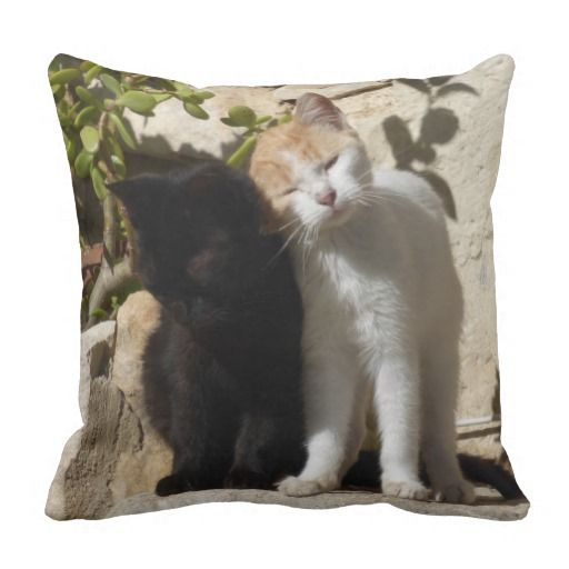 Black and orange white cute kittens pillow